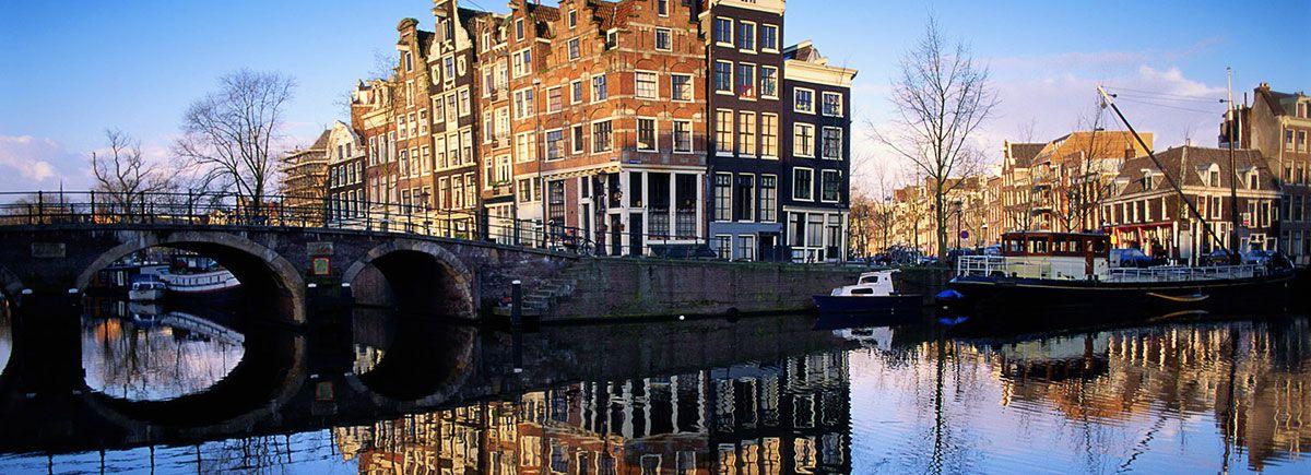 Green Seed Netherlands - Food Marketing Agency Netherlands
